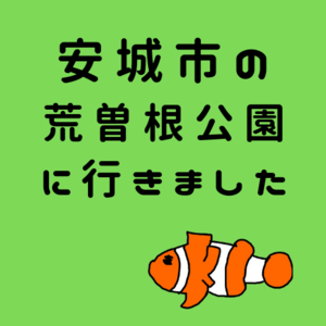 f:id:kumanomi-mama:20190701133600p:plain