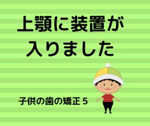 f:id:kumanomi-mama:20191119142439p:plain