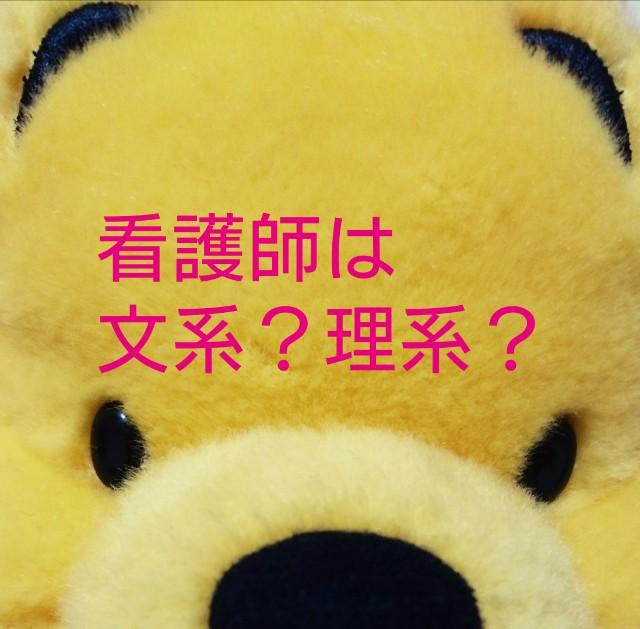 f:id:kumanopu-chan:20170806003137j:plain