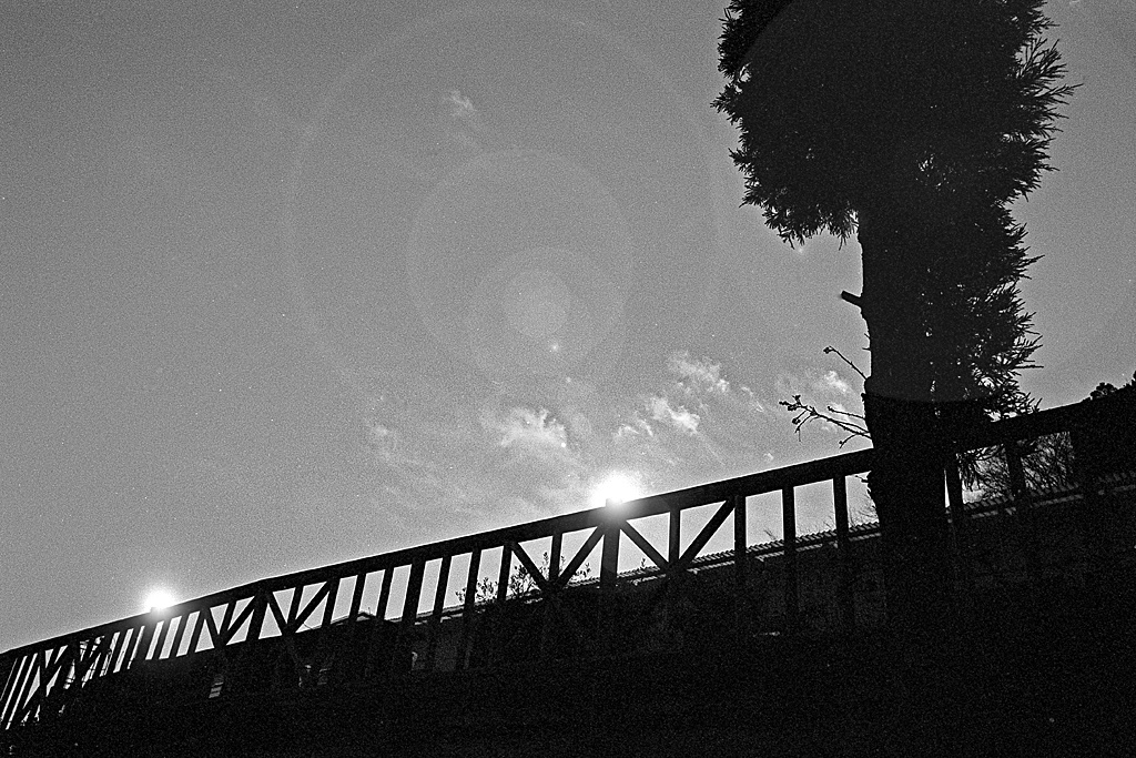 Twilight Terrace