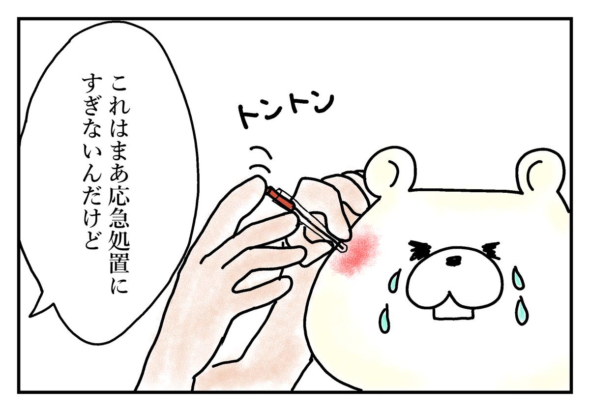 f:id:kumasukumasu:20190423230701j:plain