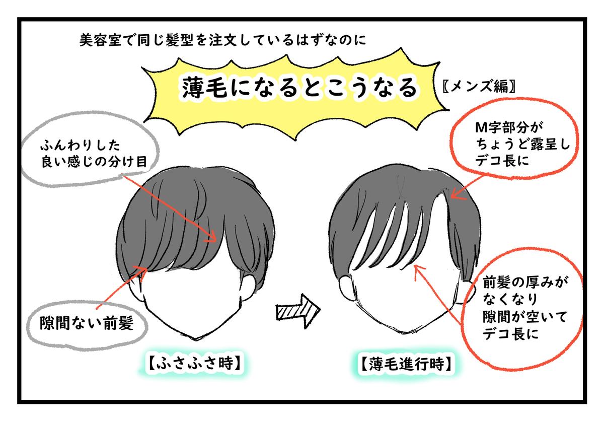 f:id:kumasukumasu:20190516115645j:plain