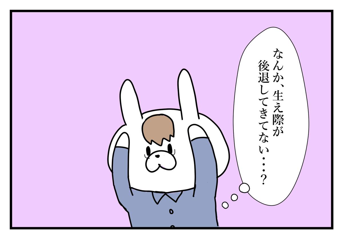 f:id:kumasukumasu:20190516121009j:plain