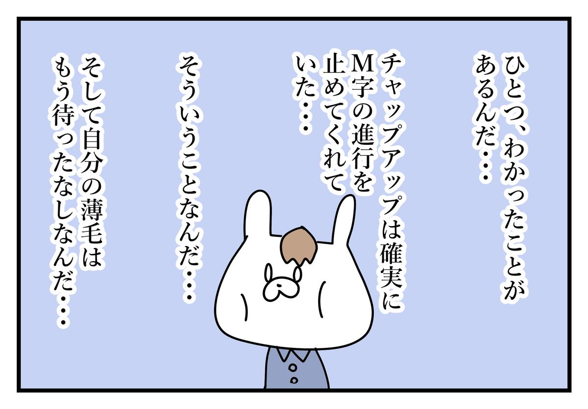 f:id:kumasukumasu:20190523003002j:plain