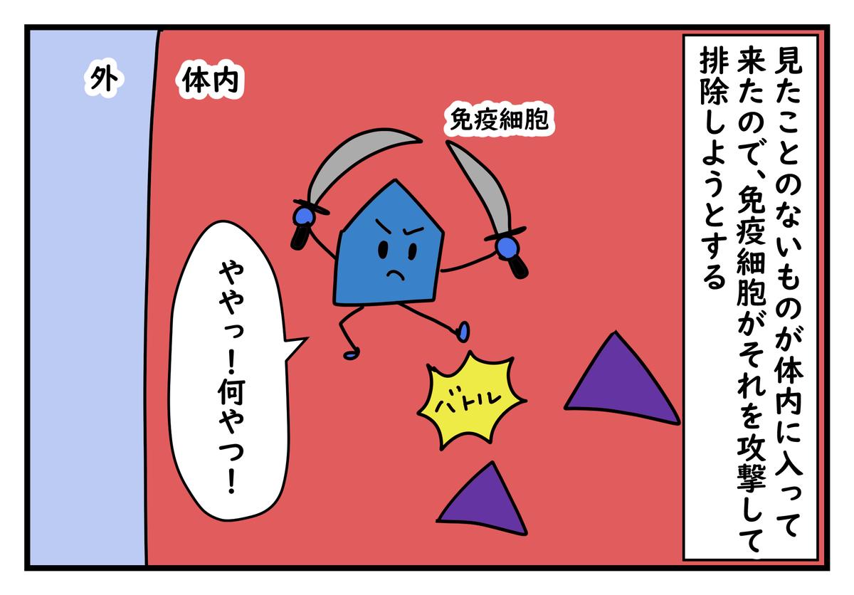 f:id:kumasukumasu:20190604143106j:plain