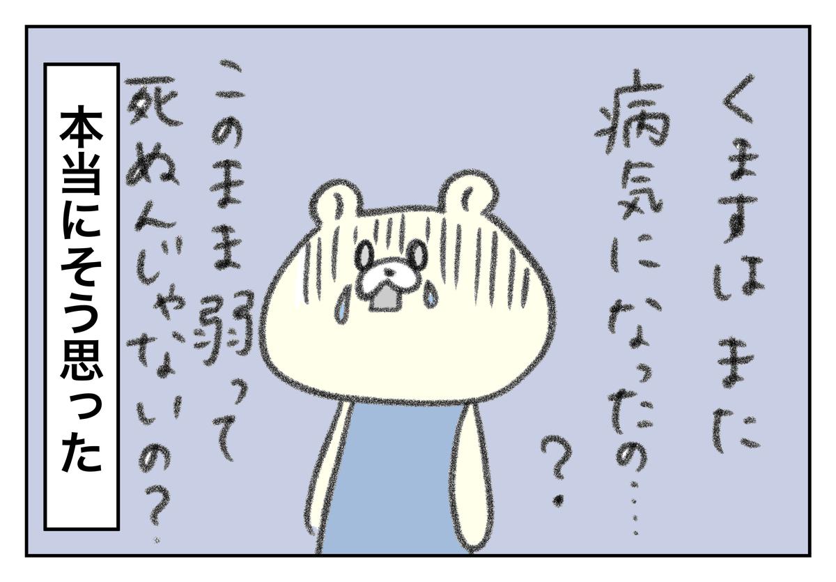 f:id:kumasukumasu:20190819114018j:plain