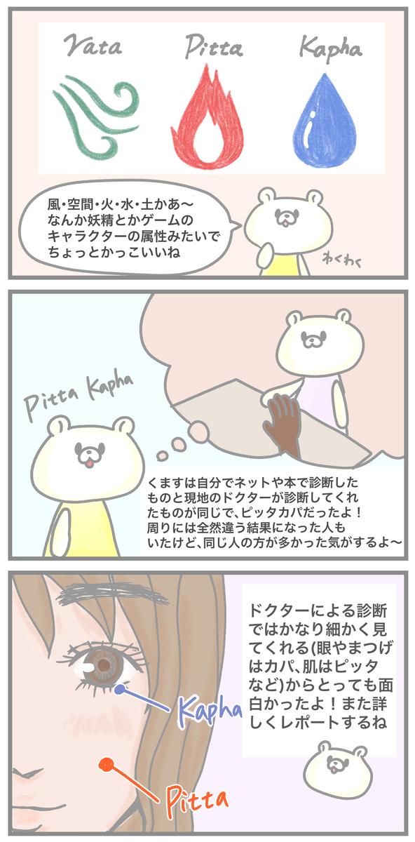 f:id:kumasukumasu:20191128191130j:plain
