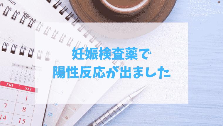 f:id:kumataro67:20210603122832p:plain