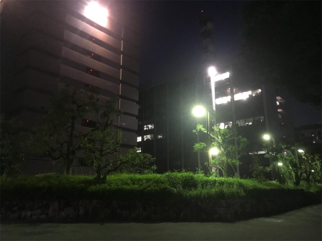 f:id:kumawo0017:20190526084043j:image
