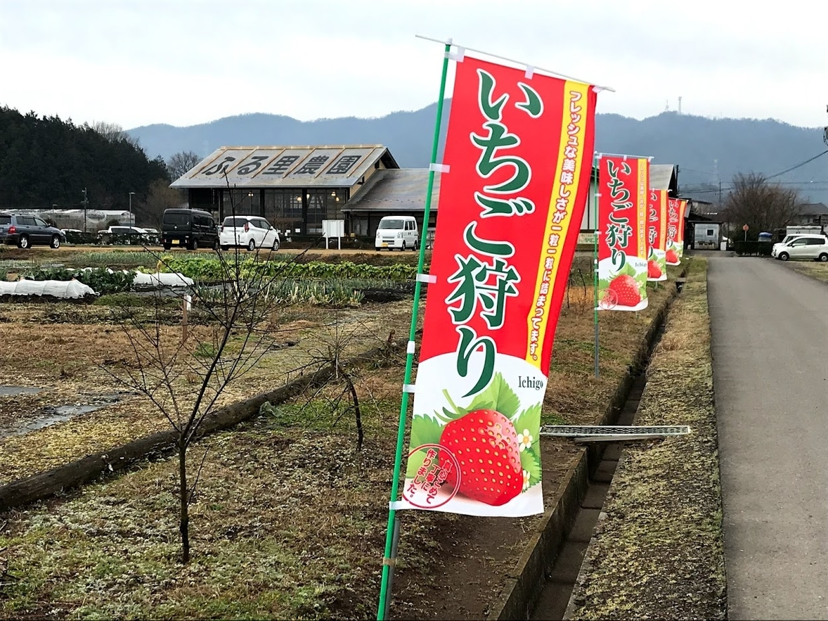 イチゴ狩り ふるさと農園美の関