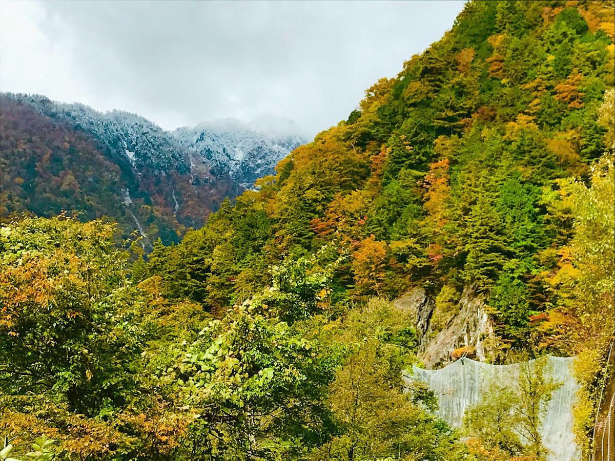紅葉と雪 県道白山公園線