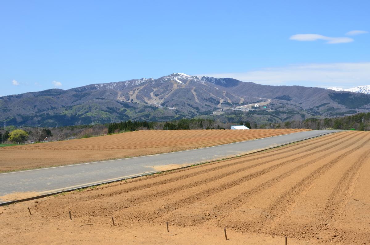 高鷲スノーパークと畑