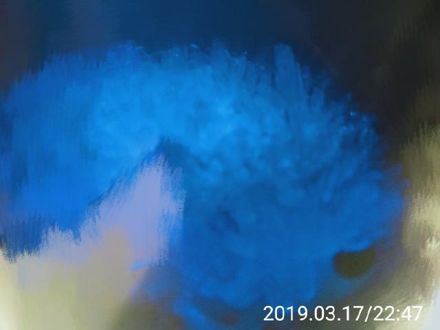 f:id:kumessay:20190319012722j:image