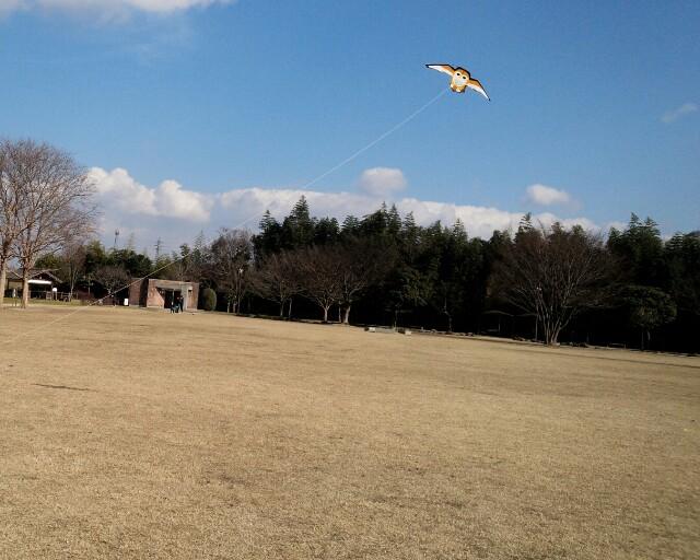 f:id:kumikomiku97:20170122235040j:plain