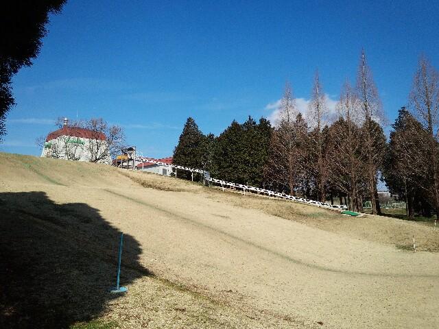 f:id:kumikomiku97:20170304010729j:plain