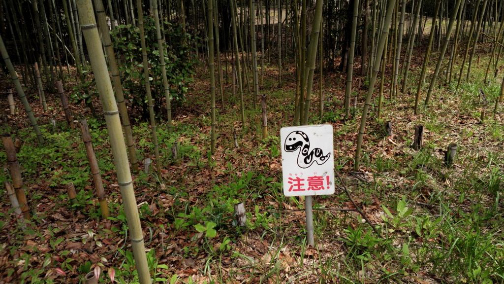 f:id:kumikomiku97:20170411230039j:plain