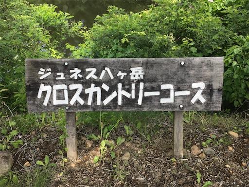 f:id:kumikotan:20170711074652j:image