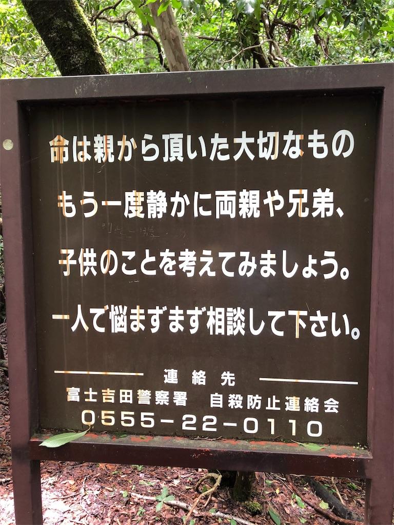 f:id:kumikotan:20180712232525j:image
