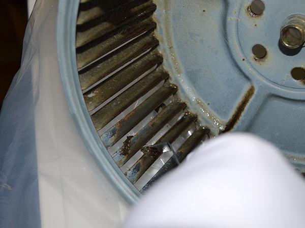シロッコケレン 換気扇掃除