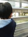 f:id:kuminco-mama:20120205125233j:image:medium
