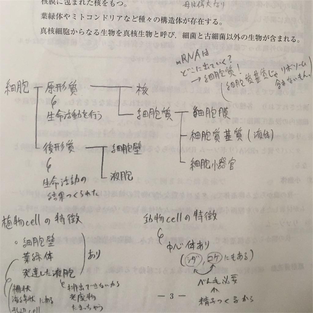 f:id:kumokumocloud:20171114072716j:image