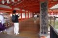 厳島神社にきました
