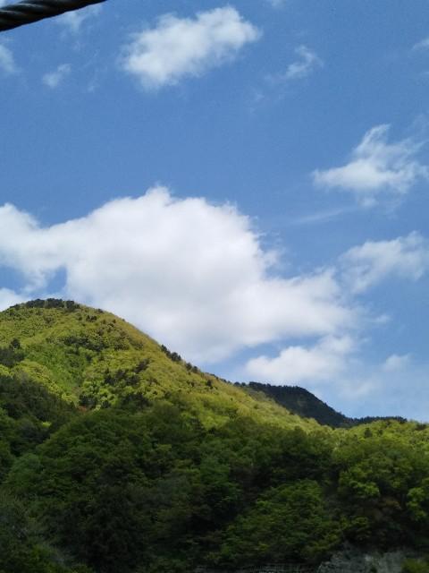 f:id:kumomogu:20210428155206j:image