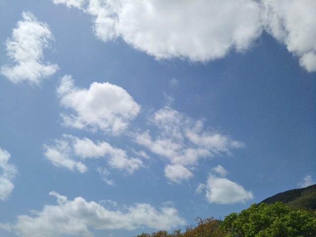 f:id:kumomogu:20210428161910j:image