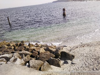 f:id:kumomogu:20210516170251j:image