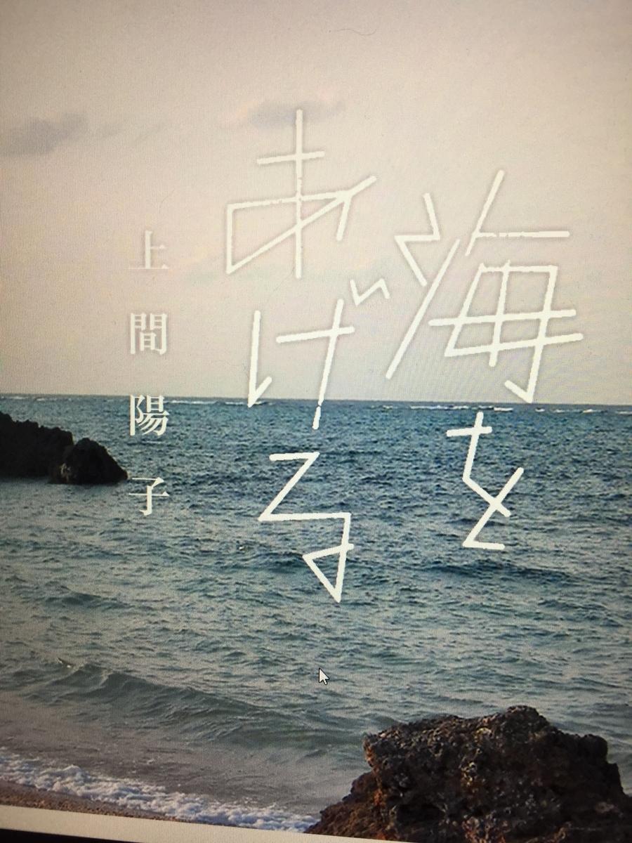 f:id:kumonoami:20210507163948j:plain