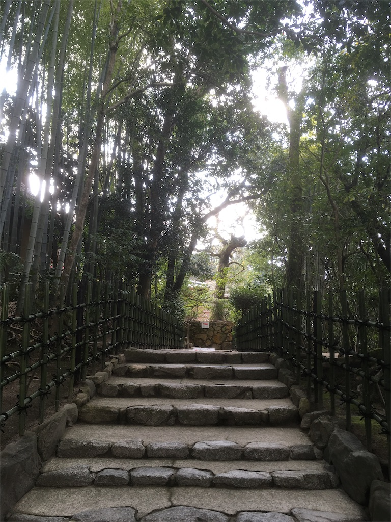 f:id:kumonokanatani0501:20191220180405j:image