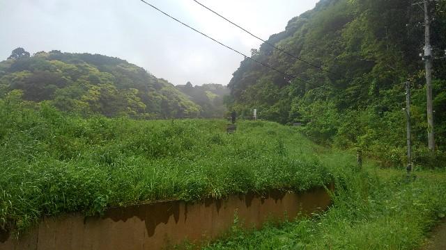 f:id:kumori-pannda:20190510110216j:plain