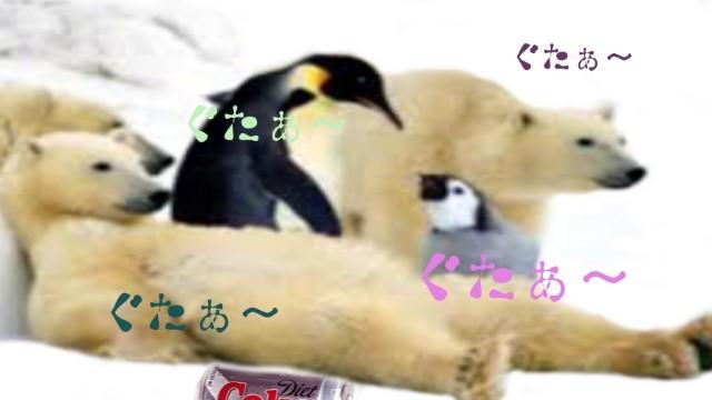 f:id:kumori-pannda:20200302164026j:image