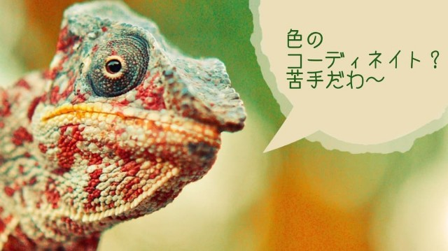 f:id:kumori-pannda:20200415103152j:image