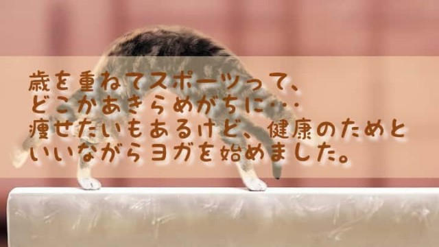 f:id:kumori-pannda:20200918094948j:image