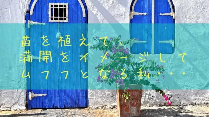 f:id:kumori-pannda:20201208095014j:plain