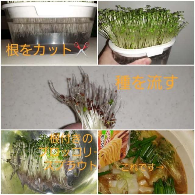 f:id:kumori-pannda:20201212151029j:image