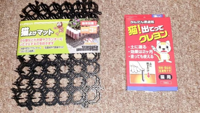 f:id:kumori-pannda:20210107234755j:plain