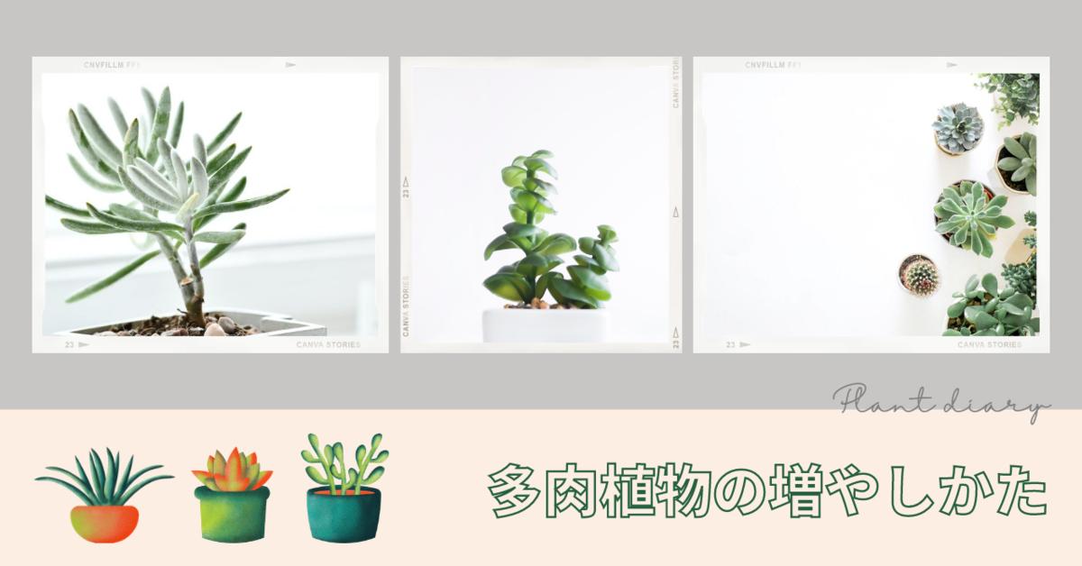 f:id:kumori-pannda:20210425142858p:plain