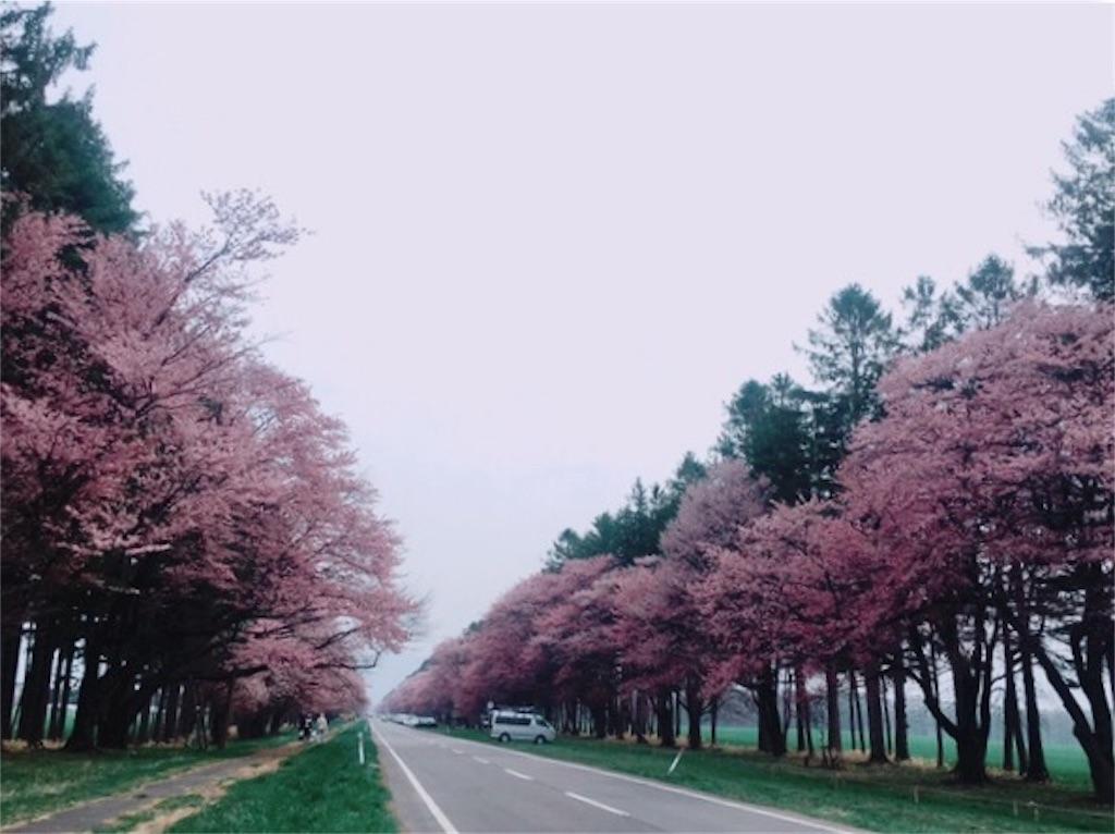 f:id:kumoribiniaruku:20180503125140j:plain