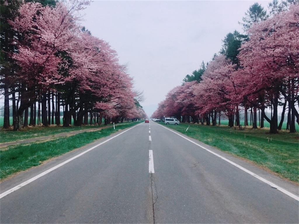f:id:kumoribiniaruku:20180503125147j:plain