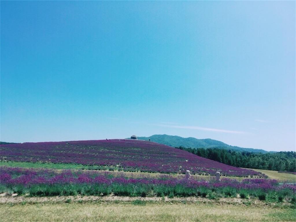 f:id:kumoribiniaruku:20180727180633j:image