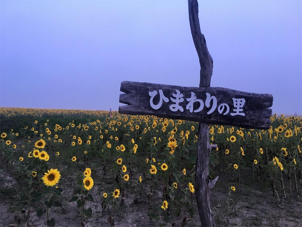 f:id:kumoribiniaruku:20180804084850j:image