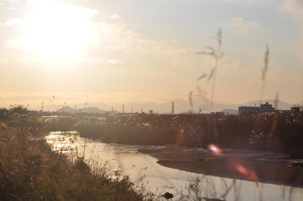 f:id:kumowasukidesuka:20191215181432j:plain