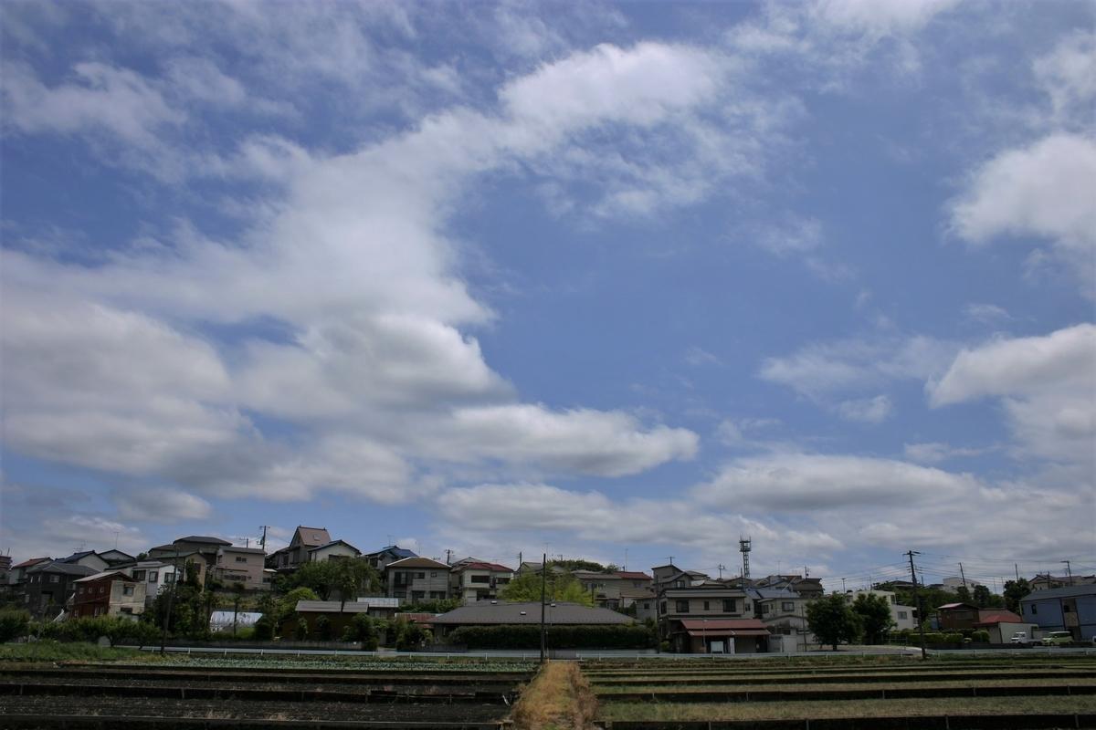 f:id:kumowasukidesuka:20200520194429j:plain