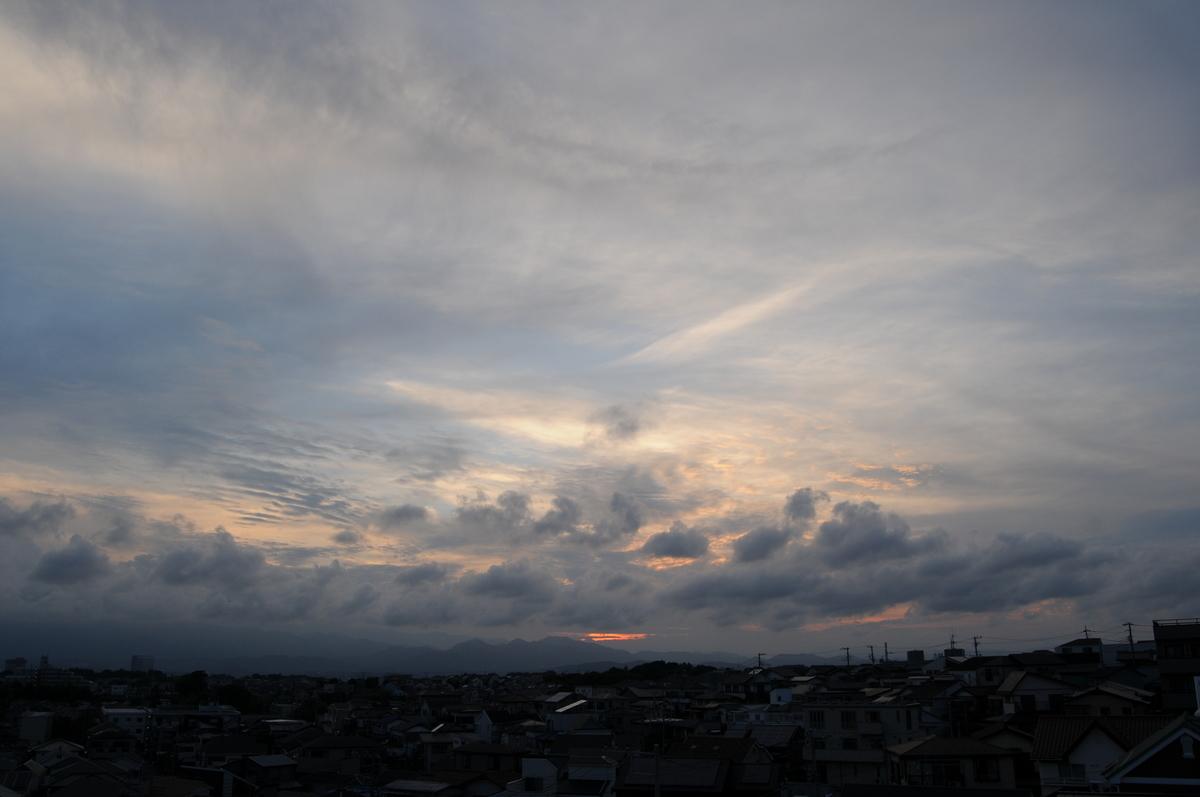 f:id:kumowasukidesuka:20200611154337j:plain