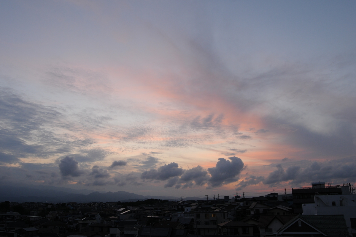 f:id:kumowasukidesuka:20200611154611j:plain
