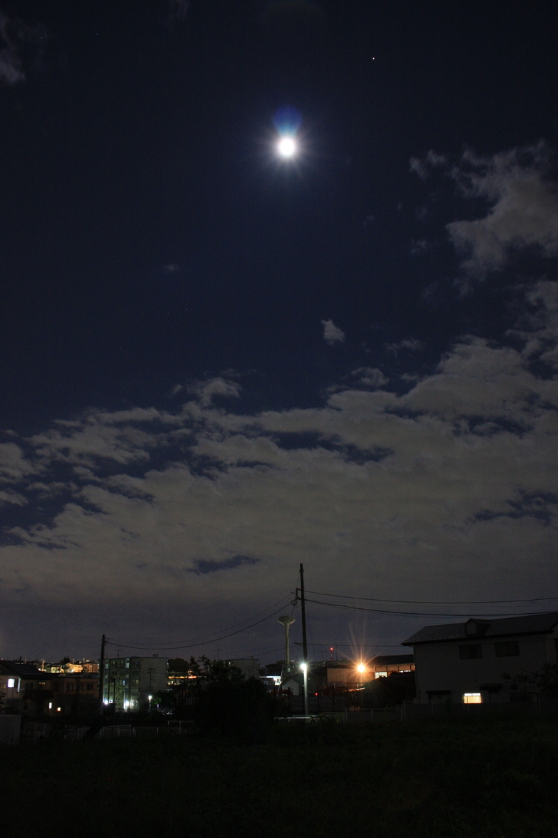 f:id:kumowasukidesuka:20201031193017j:plain