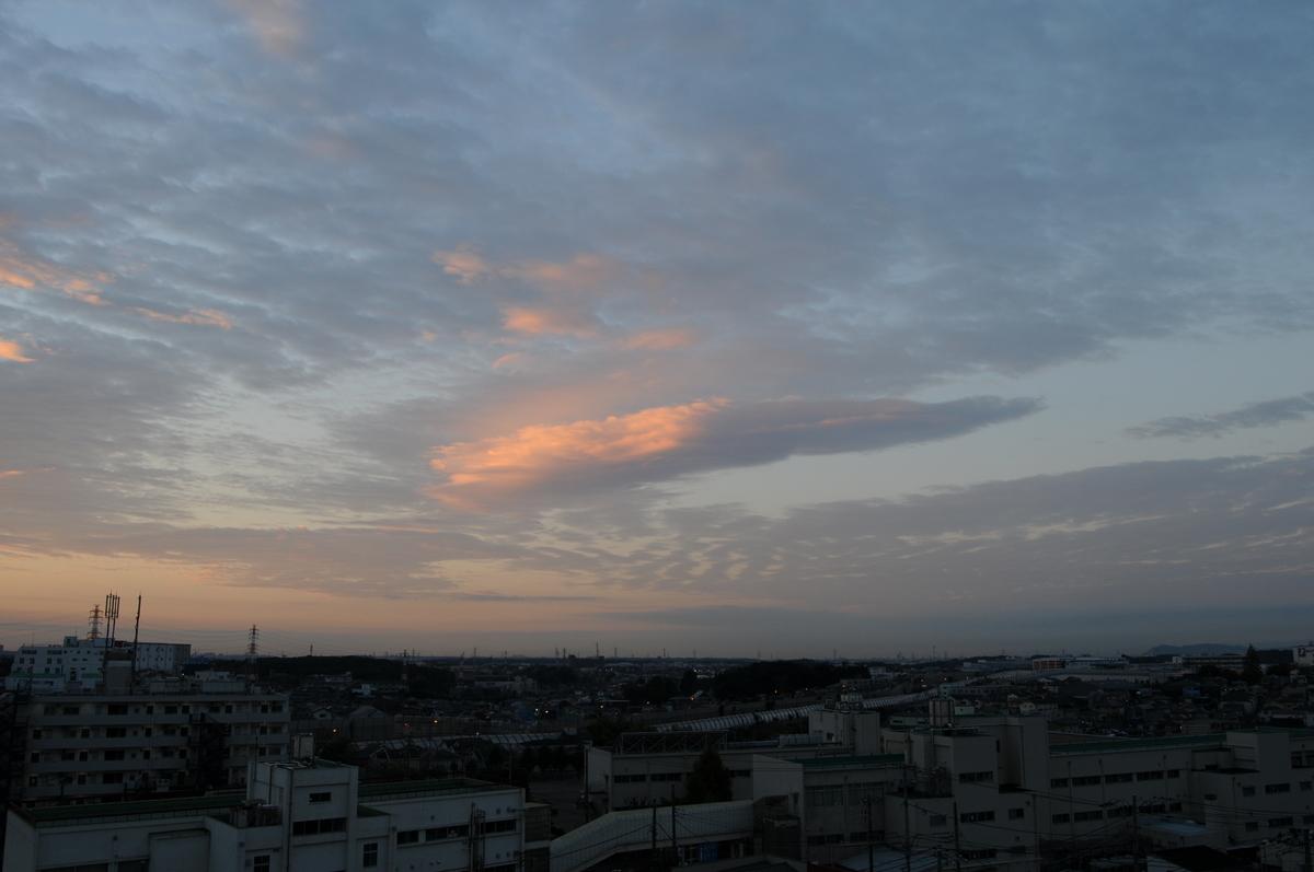 f:id:kumowasukidesuka:20201216215558j:plain