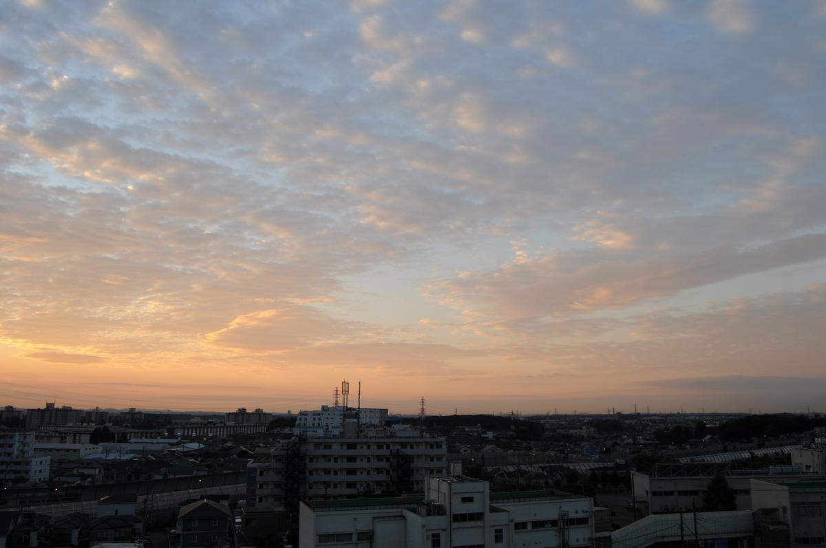 f:id:kumowasukidesuka:20201216215839j:plain